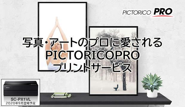 PICTORICOPRO